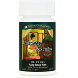 Cultivate Splendor Teapills (Yang Rong Wan) - 200 Pills/Bottle - Plum Flower Brand