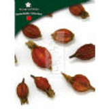 Gardenia Fruit (Zhi Zi) - Whole Form 1 lb. - Plum Flower Brand
