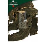 Xuan Shen - Scrophularia ningpoensis root cut
