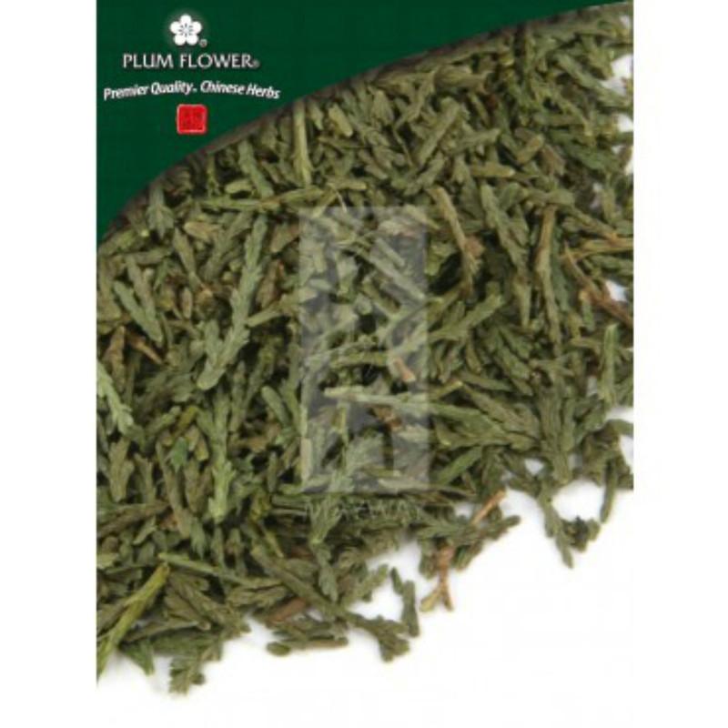 Biota Leaves Ce Bai Ye Plum Flower Whole Form 1 lb