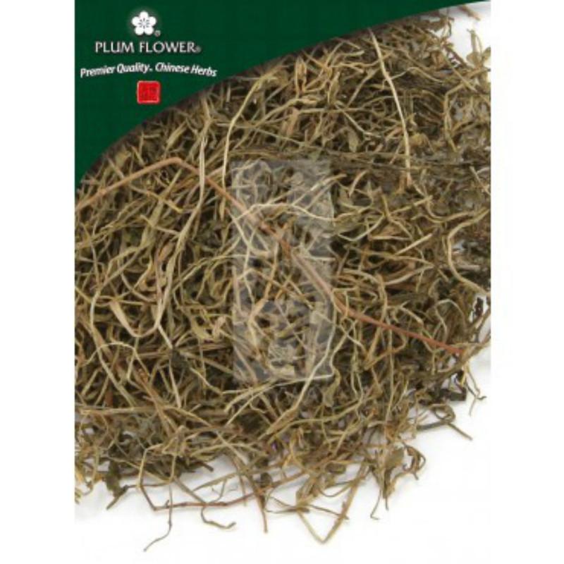 Chinese Lobelia Chinese Herb