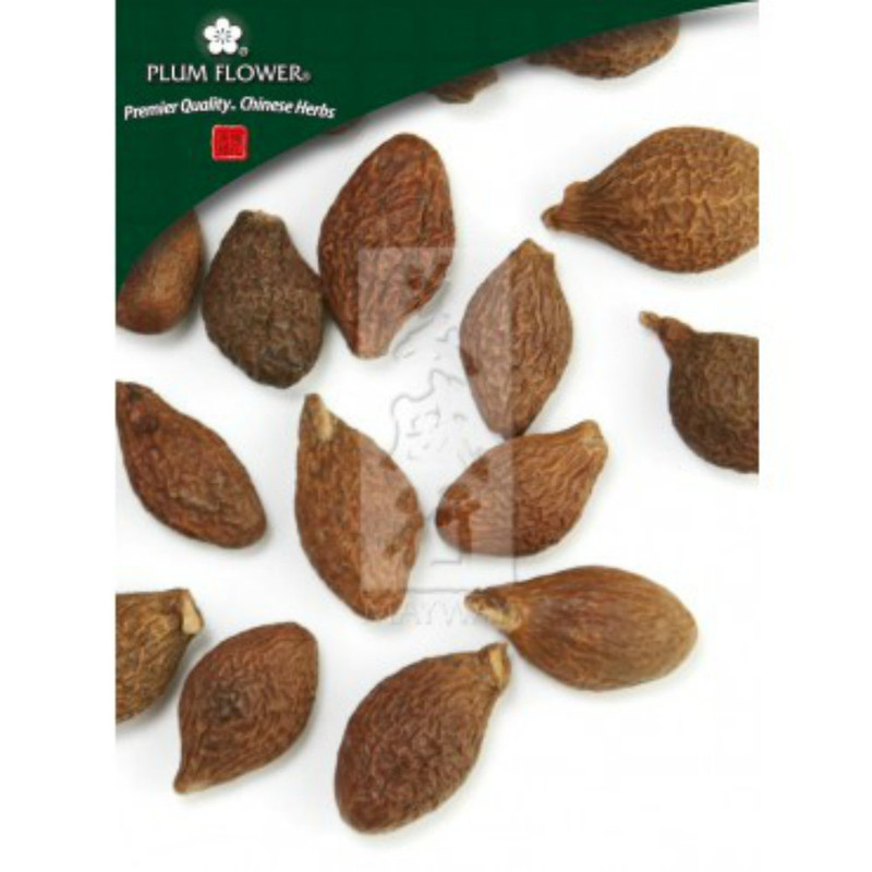 Sterculia Seed Pang Da Hai
