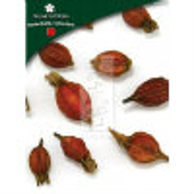 Gardenia Fruit (Zhi Zi) - Whole Form 1 lb. - Plum Flower Brand
