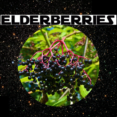 Elderberries and a Disturbance in the Force
