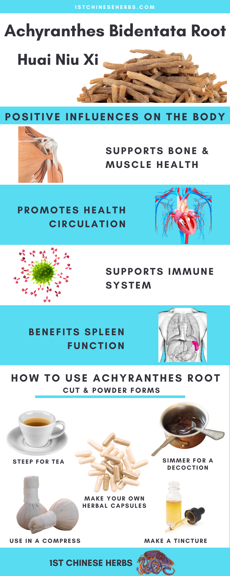 Huai Niu Xi benefits, Achyranthes bidentat root beneftis, how to use huai niu xi, how to use achyrantes Bidentata root
