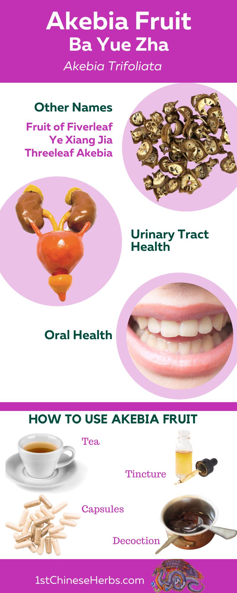 akebia fruit health benefits, akebia fruit edema, akebia fruit mouth health, akebia fruit oral health, akebia fruit pain relief, akebia fruit urination