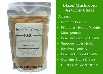 blazei mushrooms, mushroom, powder, myriad mycology, traditional bulk herbs, bulk tea, bulk herbs, teas, medicinal bulk herbs