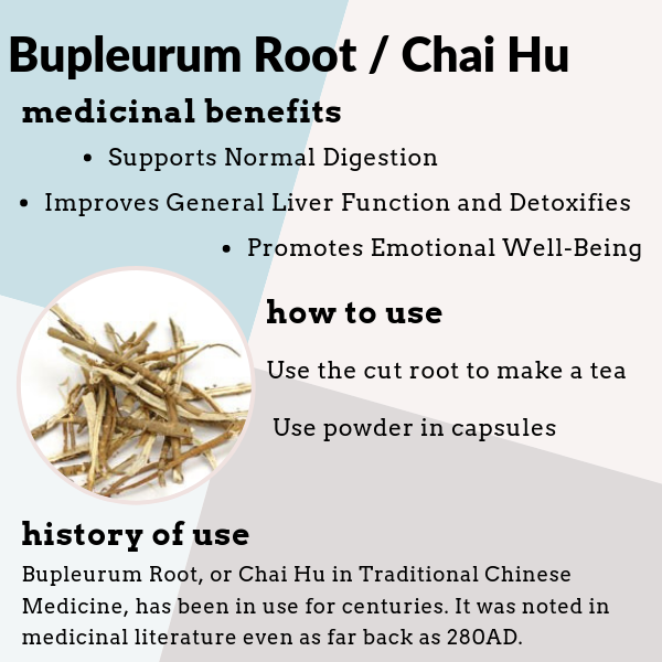 Bupleurum Root is known as Chai Hu Chinese Bupleurum and Bupleurum Chinensis. It benefits the liver, digestion, and emotional well being.