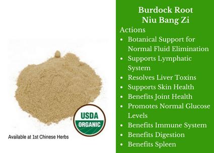 burdock root, nui bang zi, starwest botanicals, traditional bulk herbs, bulk tea, bulk herbs, teas, medicinal bulk herbs