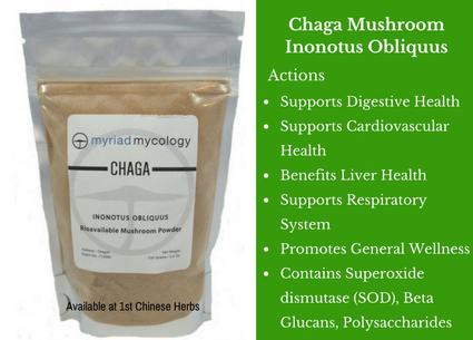 chaga mushroom, powder, traditional bulk herbs, bulk tea, bulk herbs, teas, medicinal bulk herbs
