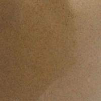 cordyceps-200-size.png