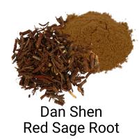 Dan Shen - Red Sage Root - Immune Boosting Herb, COVID19 herb