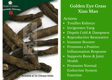 golden eye grass, xian mao, traditional bulk herbs, bulk tea, bulk herbs, teas, medicinal bulk herbs