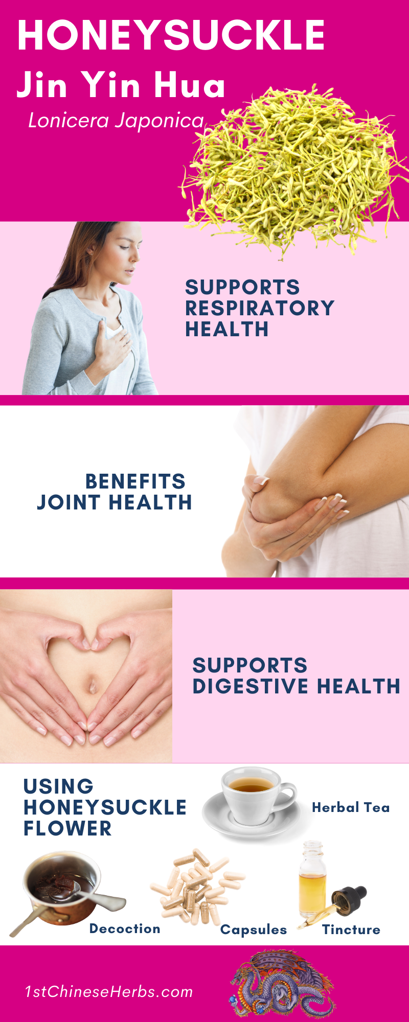 Jin Yin Hua benefits, Jin Yin Hua health benefits, how to use Jin Yin Hua, jin yin hua diabetes, jin yin hua arthritis, jin yin hua flu, jin yin hua antiviral, jin yin hua digestion, jin yin hua antibacterial