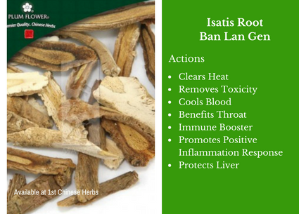 Isatis root, ban lan gen, cut, traditional bulk herbs, bulk tea, bulk herbs, teas, medicinal bulk herbs