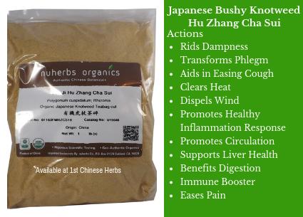 japanese bushy knotweed, Healing Lyme Disease, Herbs for Lyme disease, Buhner's protocol, why use hu zhang, benefits of bushy knotweed