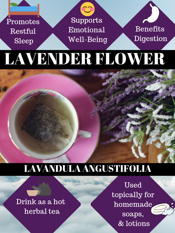 Lavender flowers, often just called lavender. Botanical name is Lavandula Angustifolia. It is a popular flower used in many homemade crafts like herbal soap, herb sachets, homemade lotion, homemade herbal cream, homemade herbal potpourri and more.