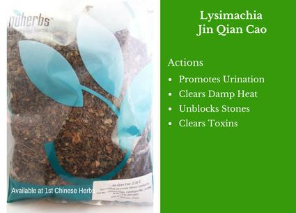 lysimachia herb, jin qian cao, lysimachia, nuherbs, traditional bulk herbs, bulk tea, bulk herbs, teas, medicinal bulk herbs