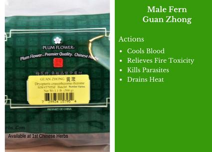 male fern, guan zhong, plum flower, traditional bulk herbs, bulk tea, bulk herbs, teas, medicinal bulk herbs