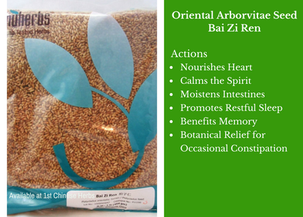 Oriental arborvitae seed, seed, nuherbs, traditional bulk herbs, bulk tea, bulk herbs, teas, medicinal bulk herbs