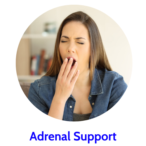 shop herbs to support adrenal health