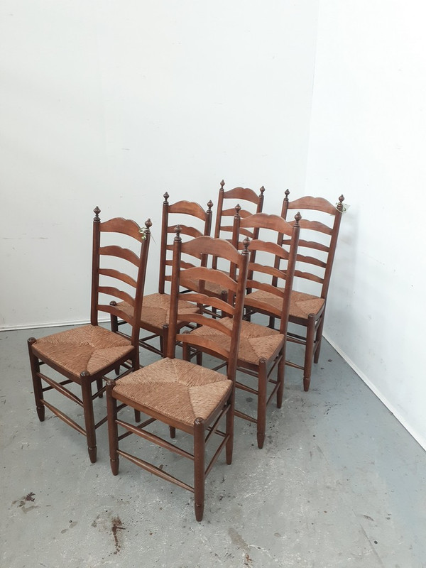 Elegant set of 6 high back dining chairs