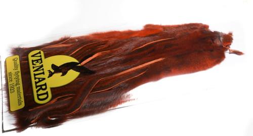 Zonker Pine Squirrel Skin