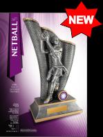 srdt-netball-2021-new.png