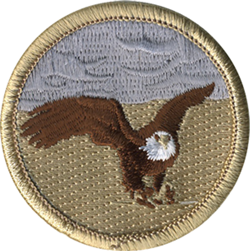 Thundering Eagle Patrol Patch
