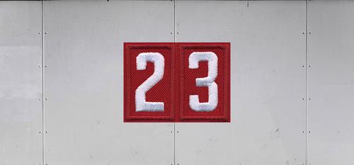 Cub Scout Pack Unit Numeral Trailer Graphic