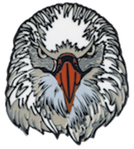 Wood Badge Pin of Wood Badge Eagle Critter Head - Front of Pin View