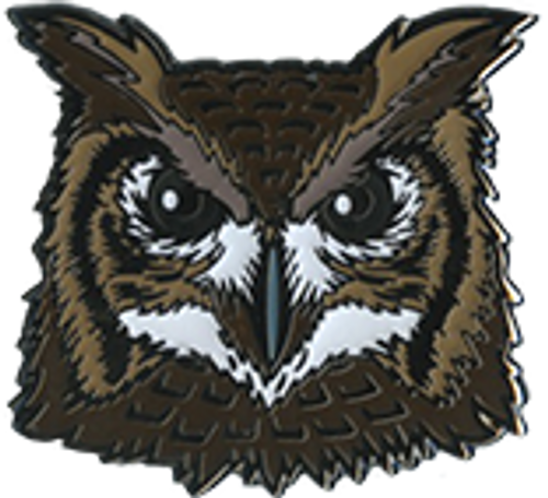Wood Badge Pin of Wood Badge Owl Critter Head - Front of Pin View