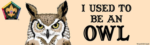 Old Logo Wood Badge Owl Bumper Sticker - Realistic (SP5065)