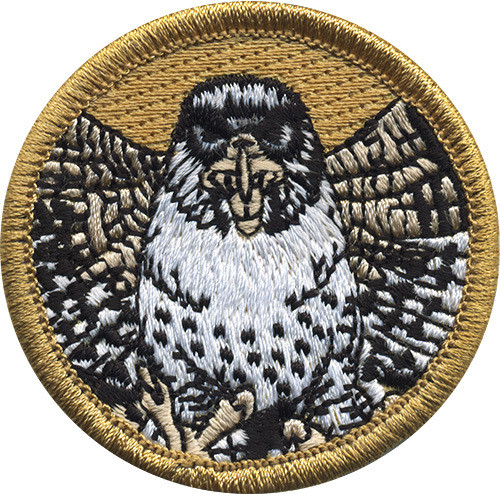Premium Falcon Scout Patrol Patch - embroidered 2 inch round