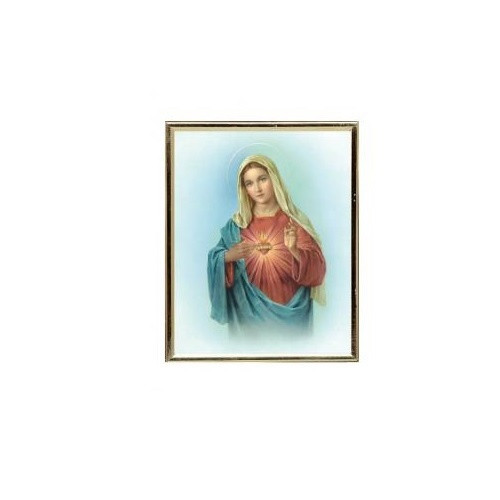 Framed Picture: Gold Mylar Sacred Heart of Mary