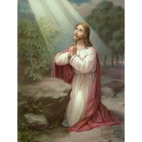 Print: Jesus Praying - 15cm x 20cm