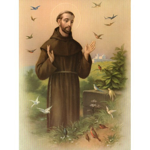 Print - St Francis - 15cm x 20cm
