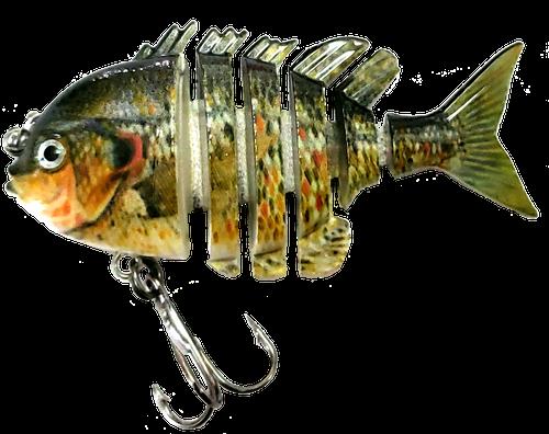RAW10A-14 2.2 inch mini blue gill swimbait - red ear perch