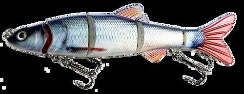 RAW12B 6 inch Swimbait - Blue Red Tail