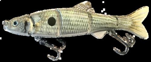 RAW12B 6 inch Swimbait - Shad