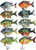 Pick Any 5 RAW10A 2.2 inch Bluegill Swimbaits for only $30