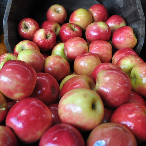 Lunch Box Pink Lady Apples