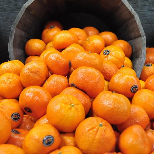 Seedless Mandarins