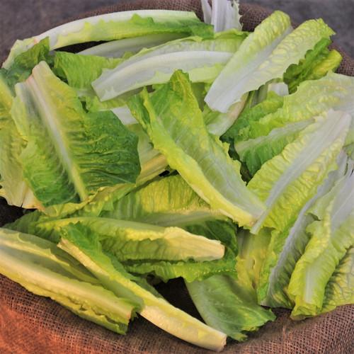 Loose Lettuce