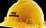 MSA Fire Warden Hard Hat
