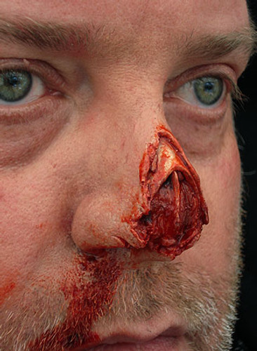 Shredded Nose Tip