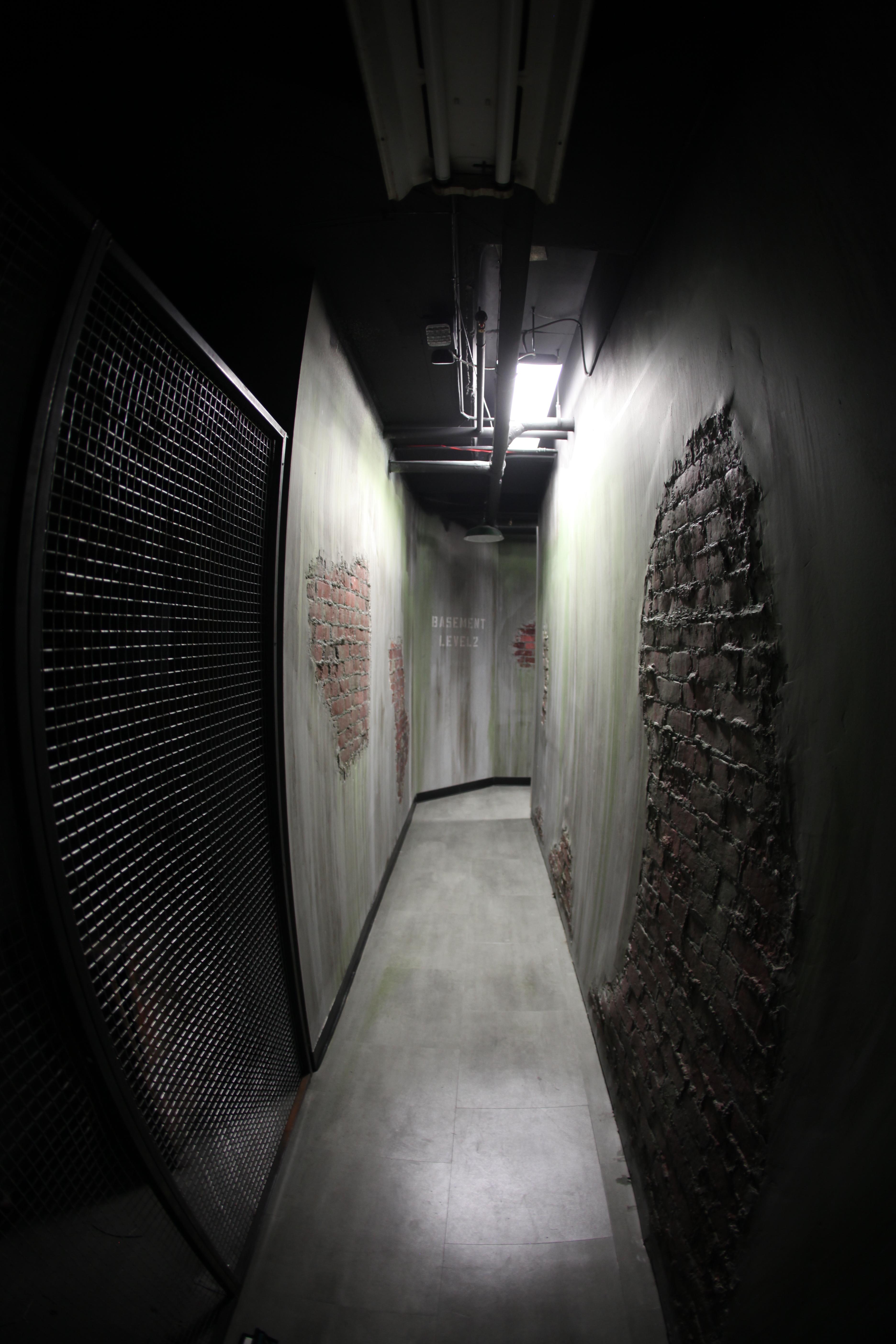 mb-hl-basement1.jpg