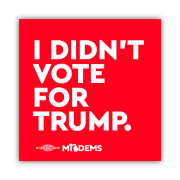 """I Didn't Vote for Trump."" (4"" x 4"" Vinyl Sticker -- Pack of Two!)"