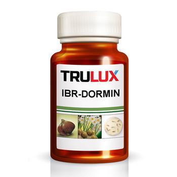 IBR-DORMIN