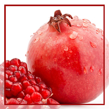 ABS POMEGRANATE STEROL